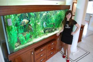 Уход за большим аквариумом