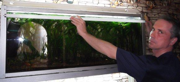 Освещение аквариума люминесцентными лампами
