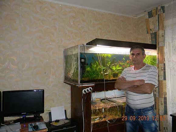 Кормите рыбок живым кормом
