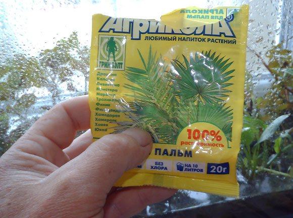 Влажная оранжерея для аквариумных растений