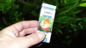 Препарат «Антипар» -как вылечить рыбок