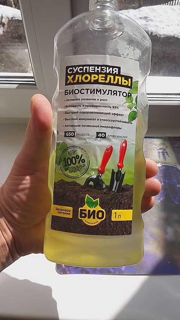 Как вырастить зеленую водоросль хлореллу в домашних условиях