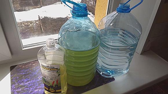 Как вырастить хлореллу для дафний