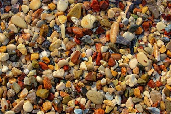 В каком грунте лучше растут аквариумные растения