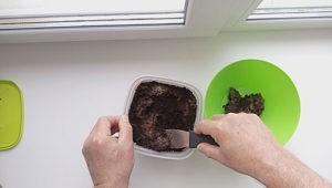 Как промыть субстрат гриндальскому червю