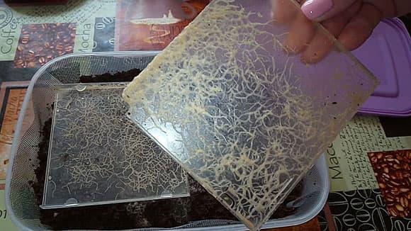 Гриндальский червь: чем он лучше аулофоруса